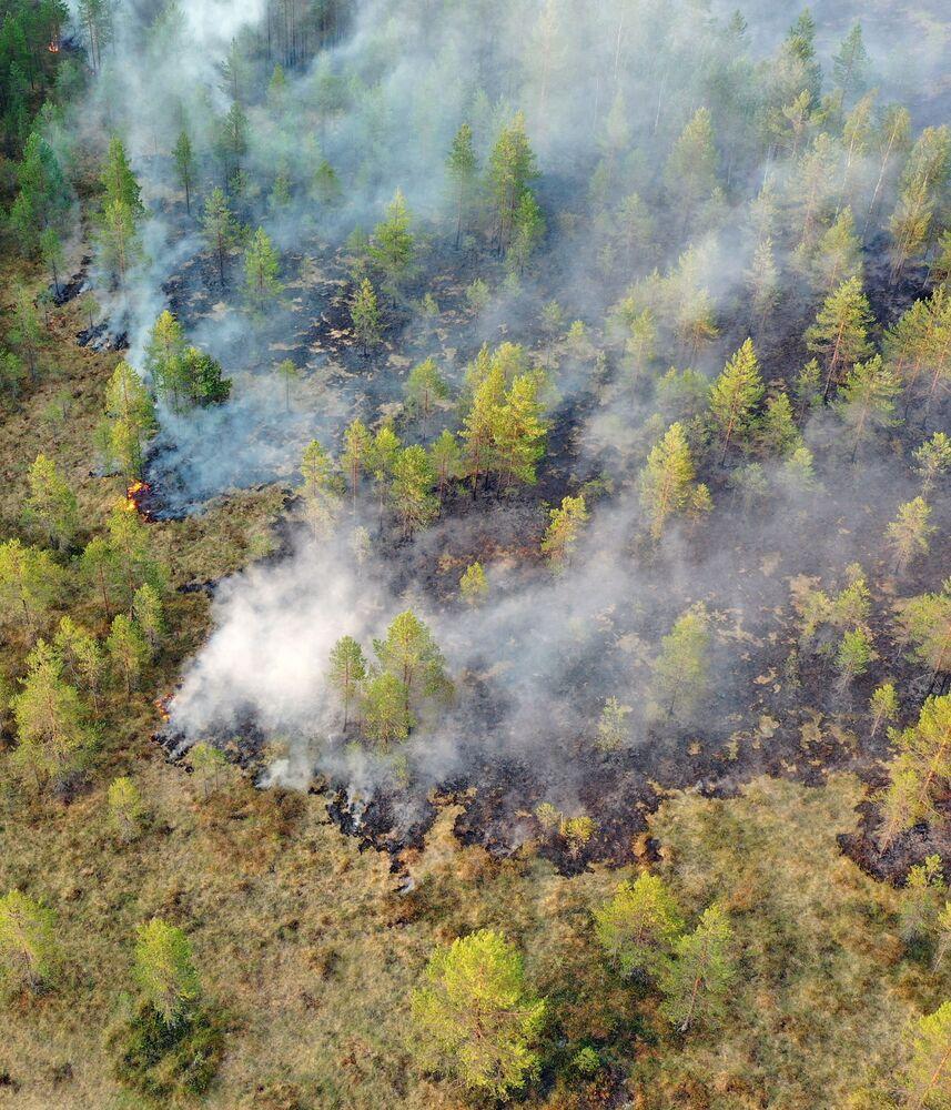 حرائق الغابات في حي سياموزير في  كاريليا، روسيا 19 يوليو 2021