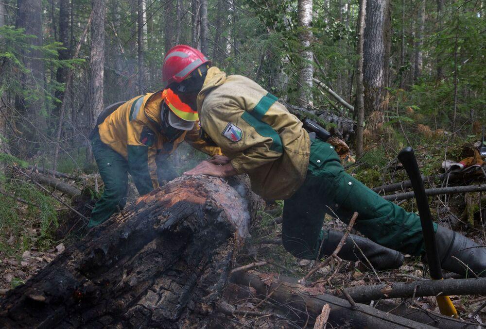 يقوم موظفو أفيا ليسو أوخرانا  لحراسة الغابات بمكافحة الحرائق، بوضع عوائق لمنع انتشارها على نطاق أوسع في ياقوتيا، روسيا 4 يوليو 2021