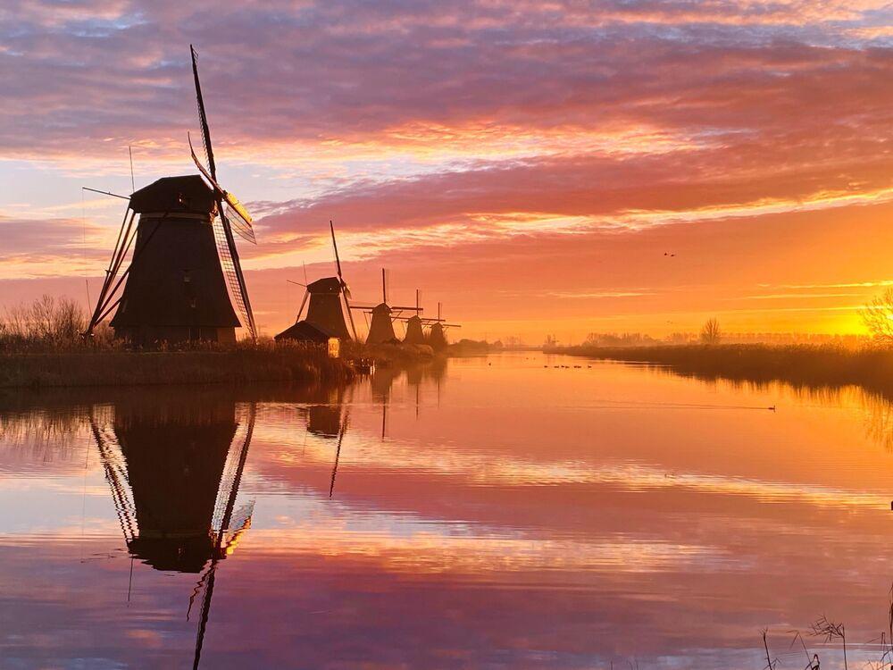 صورة بعنوان صباح هولندي، للمصورة الهولندية كلير دروبيرت، الحائزة على المركز الأول في ترشيحات الغروب من  مسابقة التصوير الدولية IPPAWARDS 2021