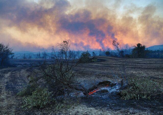 اندلاع حريق ضخم في غابات أنطاليا