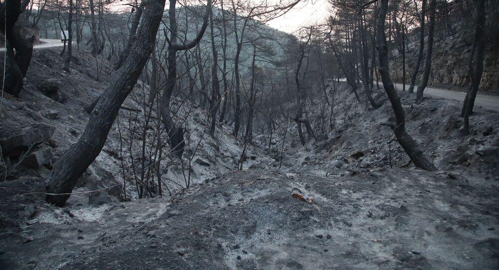 حرائق تلتهم مناطق في شمالي لبنان بتاريخ 29 يوليو / تموز