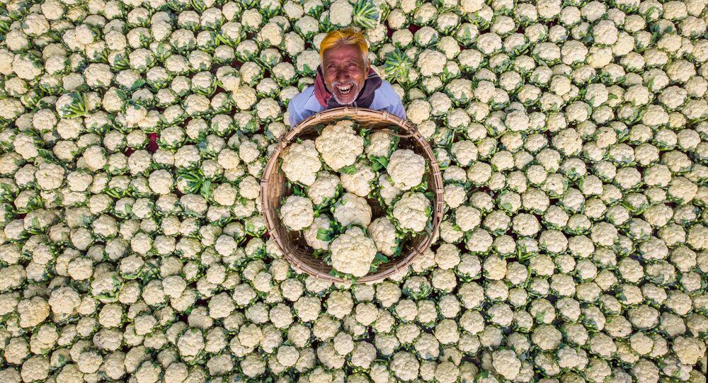 صورة بعنوان المزارع السعيد، للمصور رفيد يسار من بنغلاديش، تفوز بجائزة أفضل صورة عبر التصويت على الإنترنت، ضمن مسابقة أندريه ستينين للتصوير الصحفي الدولي