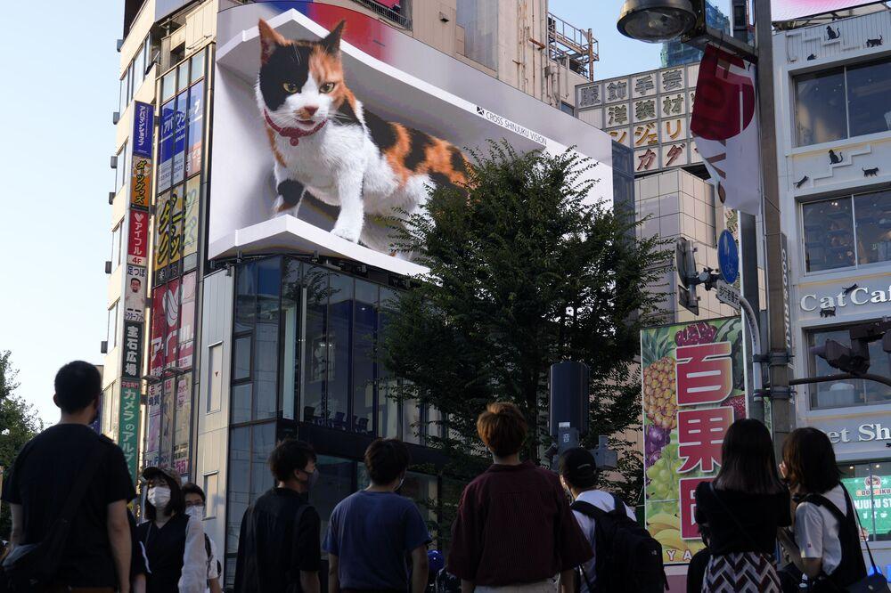 أشخاص يمشون بجوار عرض إعلان فيديو ثلاثي الأبعاد لقطط عملاق تم تركيبه مؤخرًا في منطقة التسوق الشهيرة شينجوكو في طوكيو، اليابان 1 أغسطس 2021.