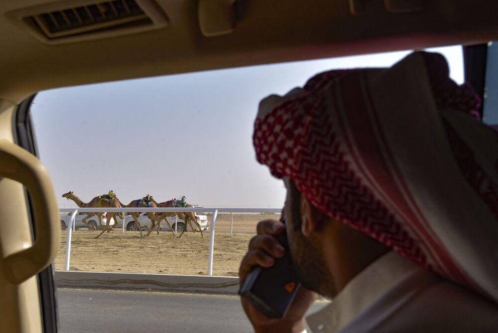سباق الهجن في السعودية
