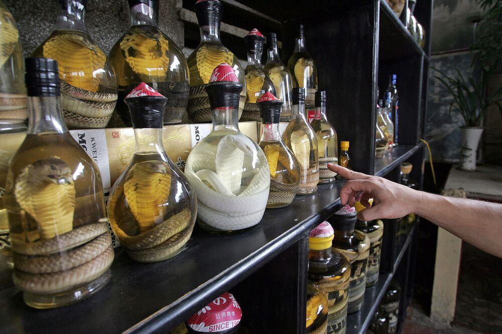 زجاجات من نبيذ الثعبان في مطعم في ضواحي مدينة هانوي، فيتنام