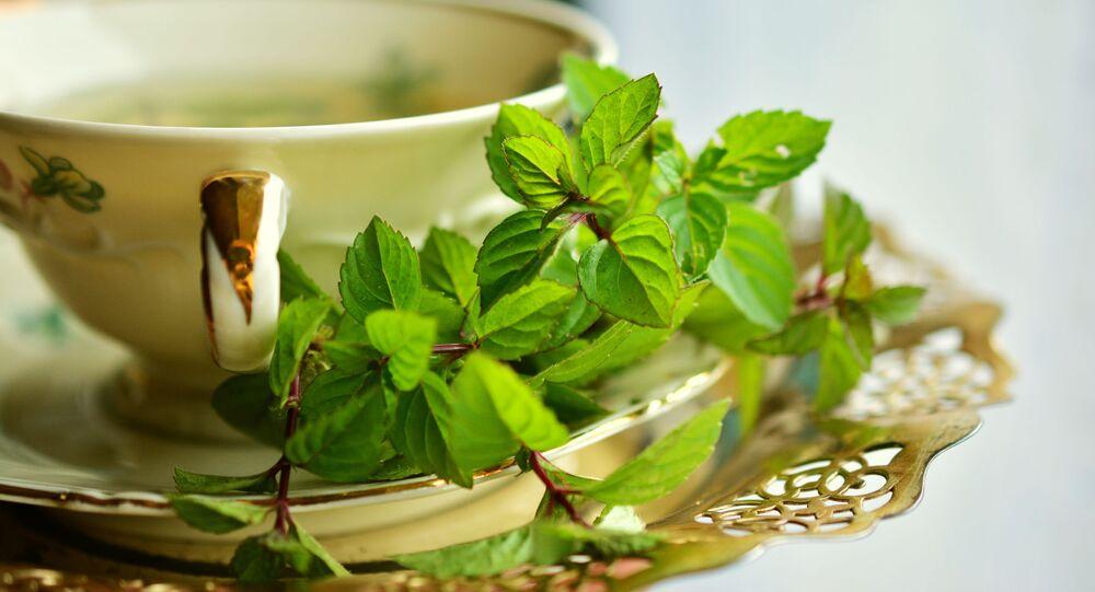 مشروب الشاي الأخضر مع النعناع
