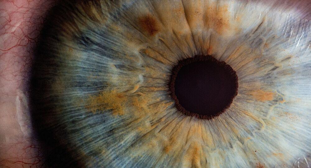 بؤبؤ مقرب جدا في عين بشرية