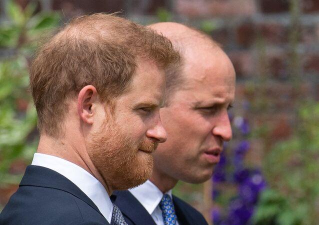 الأميران البريطانيان، وليام وهاري