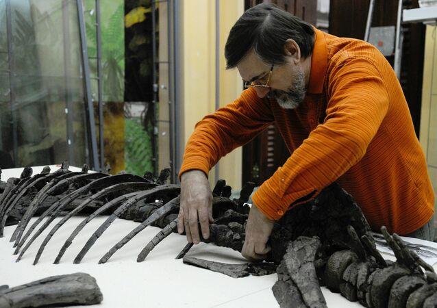علماء روس يكتشفون نوعاً جديداً من الديناصورات العاشبة