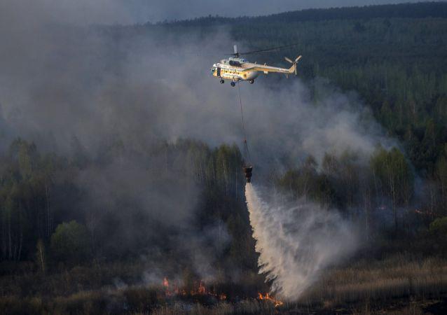 إخماد الحريق في غابات تشيرنوبيل