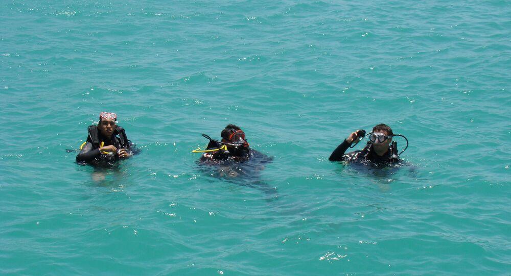 غوص في البحر الاحمر