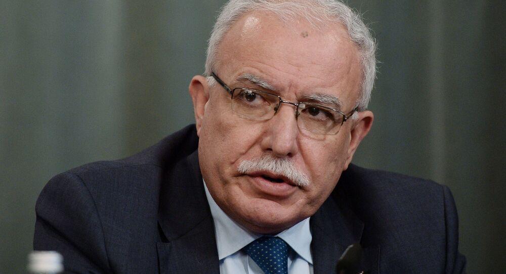 رياض المالكي، وزير الخارجية الفلسطيني