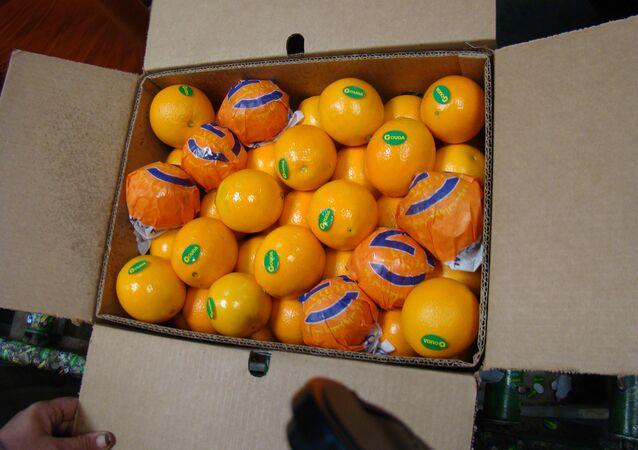 برتقال مصري