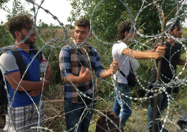 الحدود المجرية