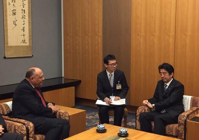 شكري يسلم رسالة من السيسي إلى رئيس وزراء اليابان