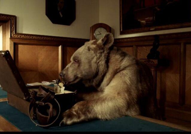 الدب الروسي فى قناة آر تى