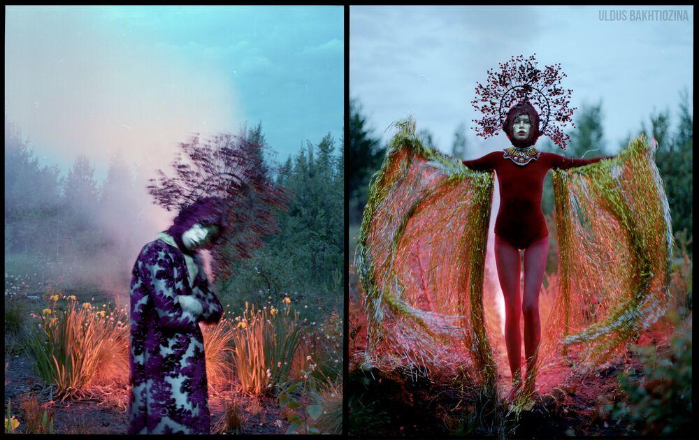 روح الغابة