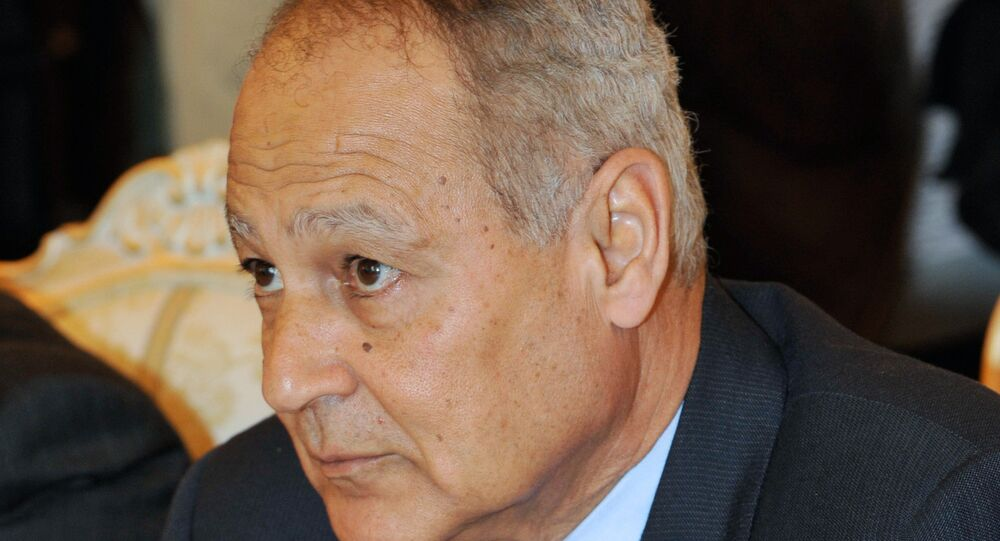 وزير الخارجية المصري الأسبق أحمد أبو الغيط