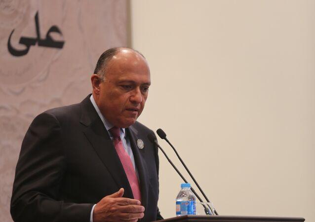 وزير الخارجية المصري سماح شكري