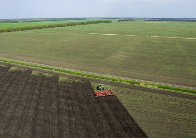 أرض زراعية
