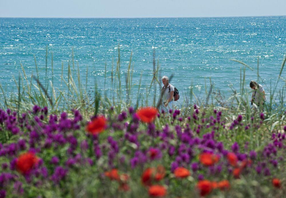 شاطئ البحر الأسود بمقاطعة فيودوسيا.