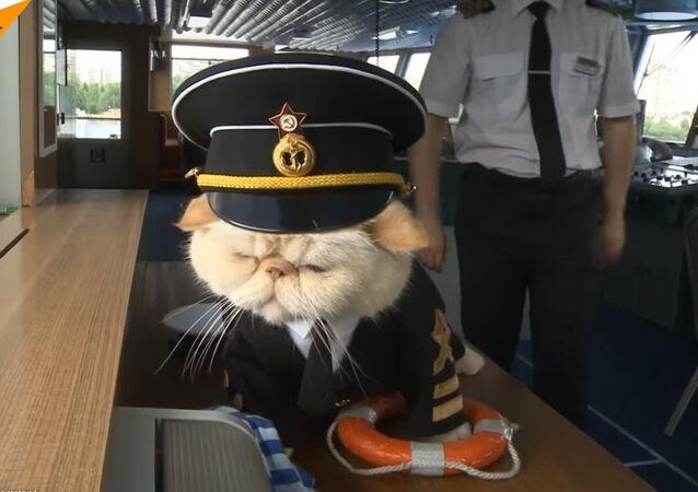 ماذا فعل قبطان هذه السفينة ليجذب السياح