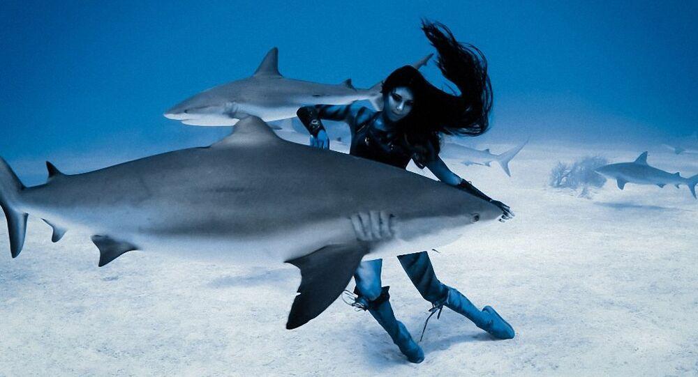 القرش الراقص
