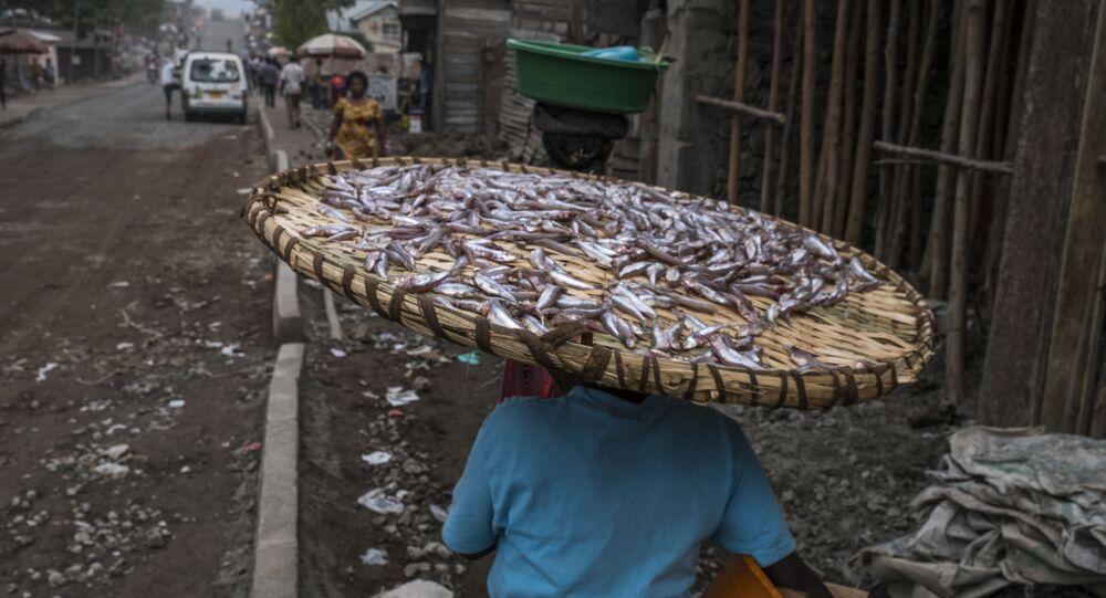 امرأة تحمل وعاءاً من الأسماكا الصغيرة على رأسها في غومو، الكونغو 12 يوليو/ تموز 2016