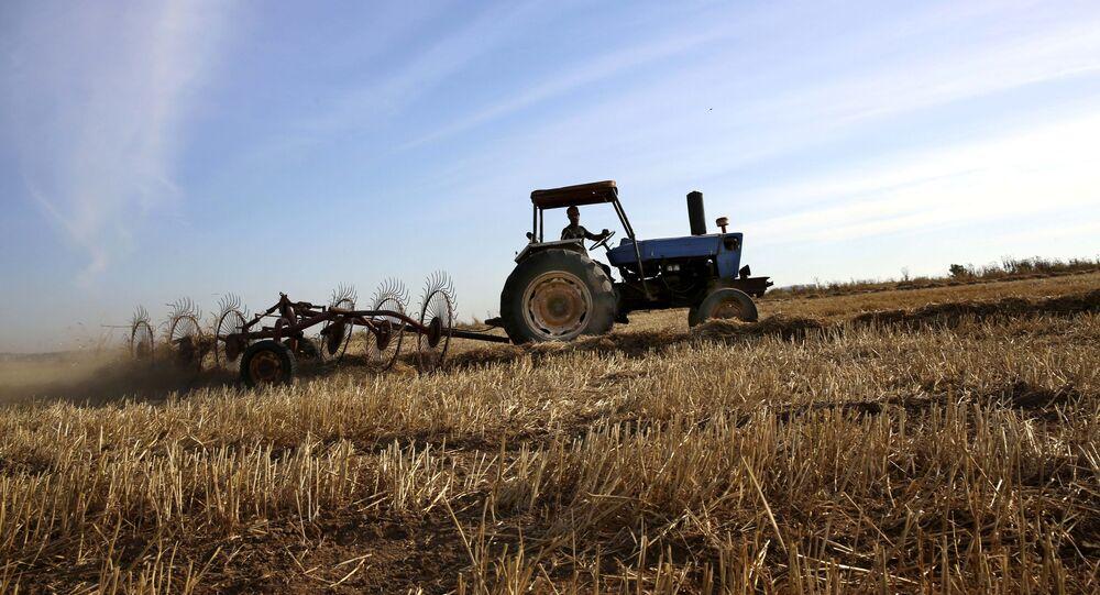 السعودية نيوز | مؤسسة الحبوب: شراء 10% من احتياجات القمح من شركات سعودية بالخارج
