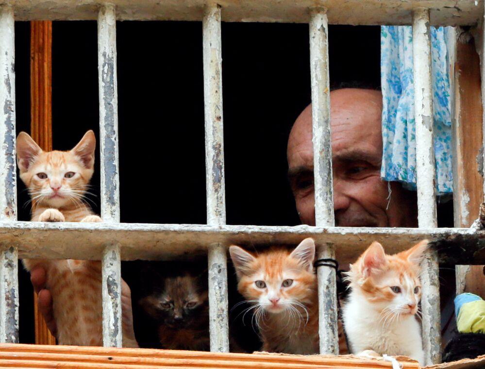 سجين يطل من شباك غرفته بكييف، أوركانيا 19 يوليو/ تموز 2016