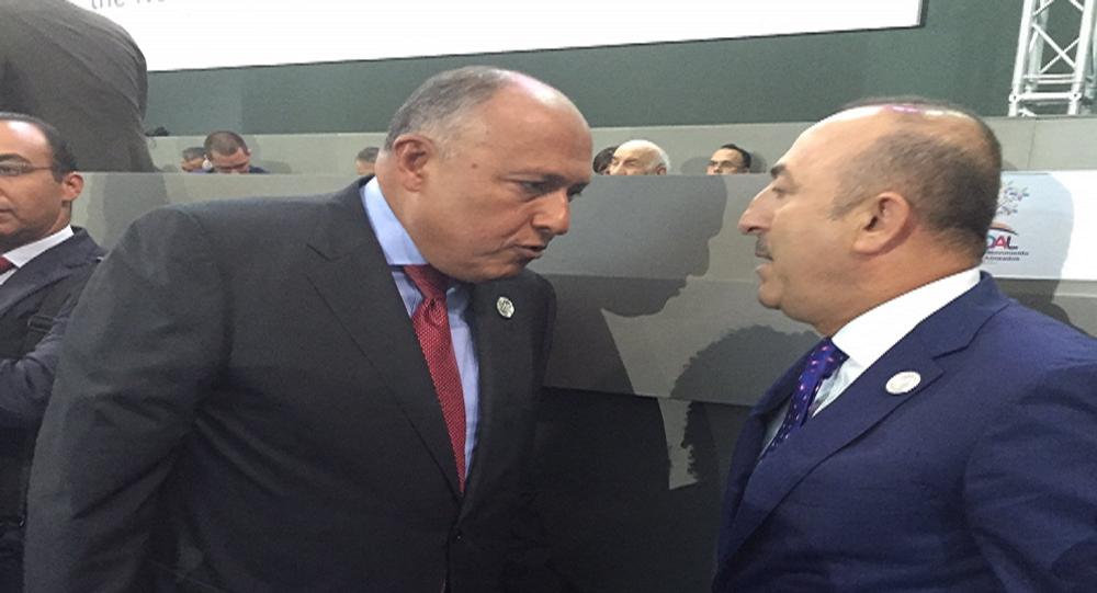 وزير الخارجية المصري ونظيره التركي