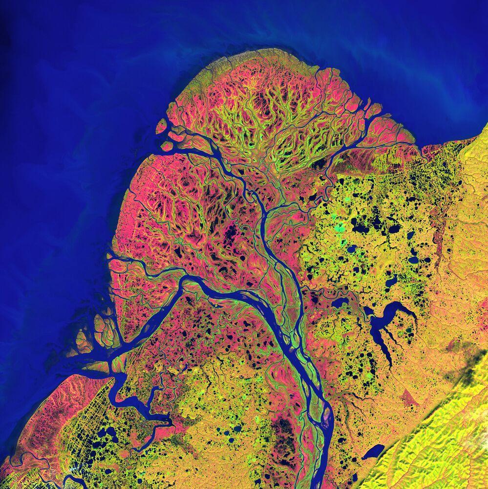 صورة للمحمية الطبيعية البرية دلتا يوكون في ألاسكا.