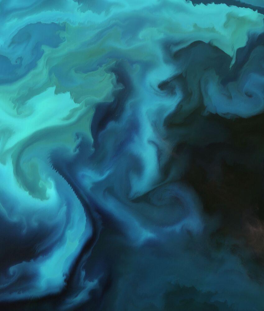 تجمع العوالق (أو البلانكتون: الكائنات البحرية الدقيقة) في بحر بارنتس - صورة من القمر الصناعي الأوروبي لوكالة Sentinel-2A
