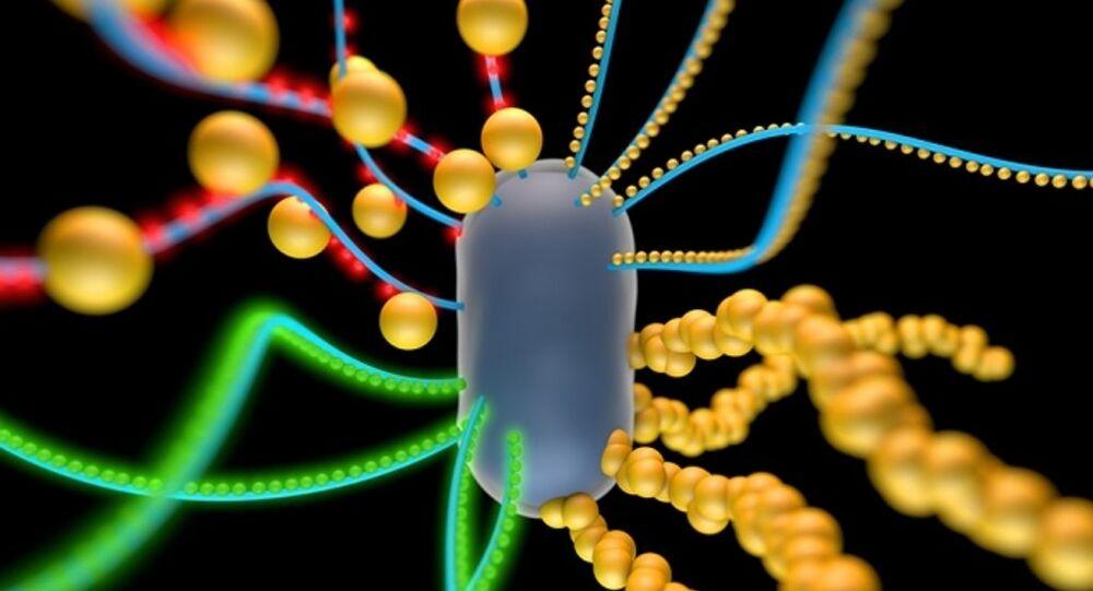 بكتيريا تتغذى على الكهرباء
