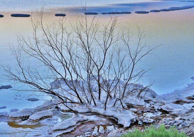أحد شواطئ البحر الميت