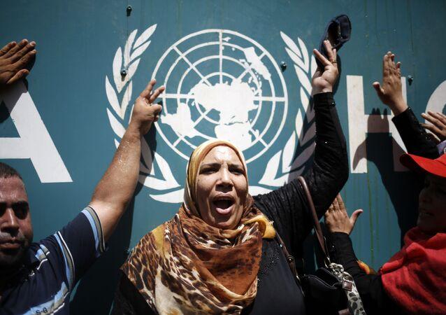 اضراب شامل في مرافق الاونروا في مدينة غزة وشمال الضفة