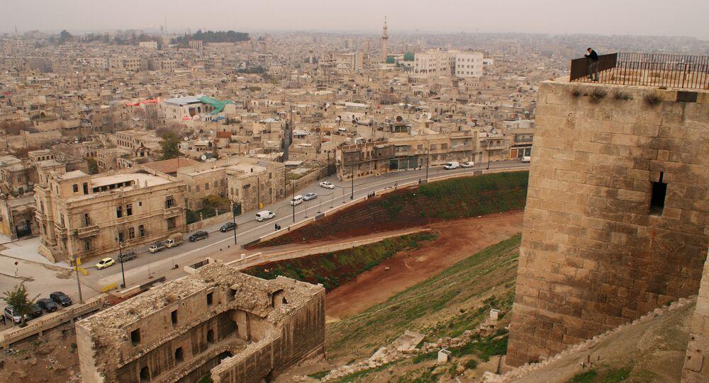 رجل يقف في أعلى القلعة التاريخية في حلب، 2009