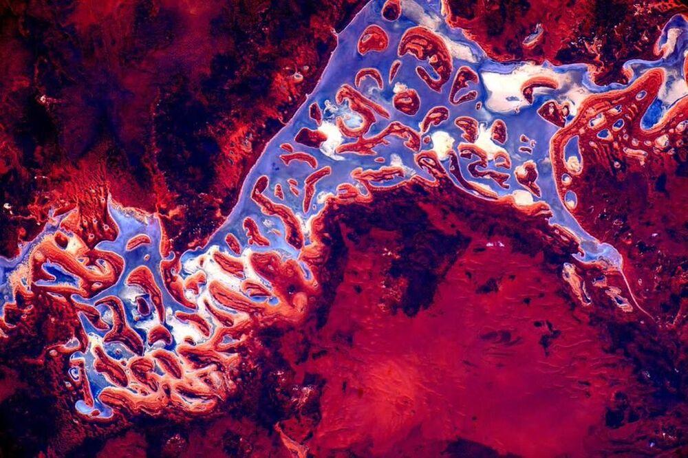 صورة لأستراليا من الفضاء التقطها رائد الفضاء سكوت كيلي على متن محطة الفضاء الدولية