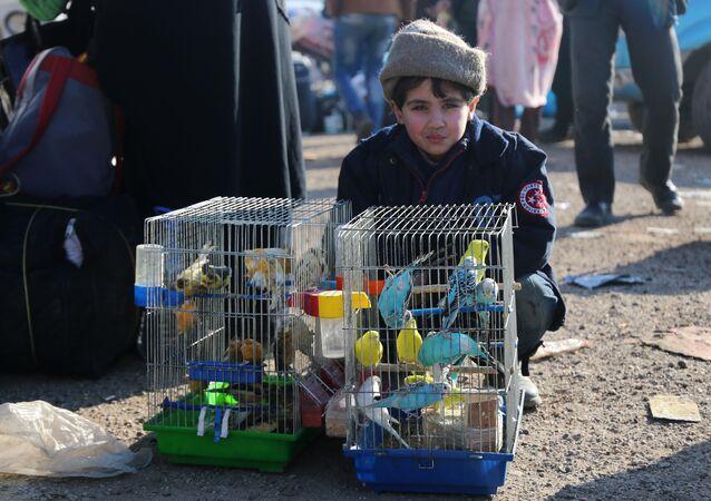 طفل سوري من حلب، 20 ديسمبر/ كانون الأول 2016