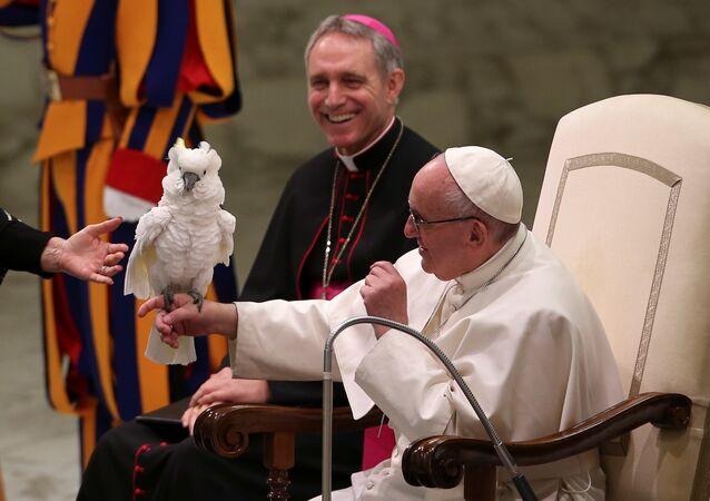 تقديم عرض للسيرك في الفاتيكان
