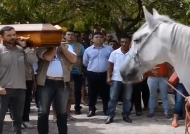 حصان يبكي في جنازة صاحبه المتوفي