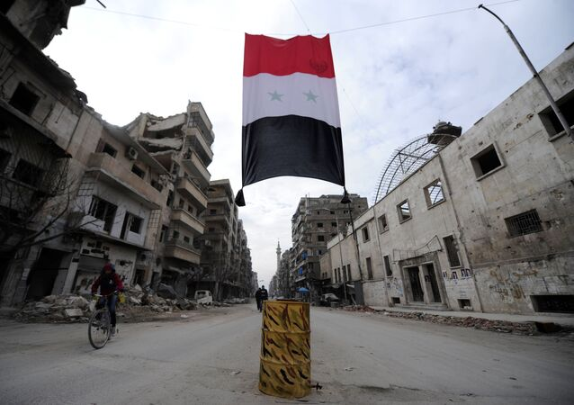 العلم السوري في حلب، سوريا 30 يناير/ كانون الثاني 2017