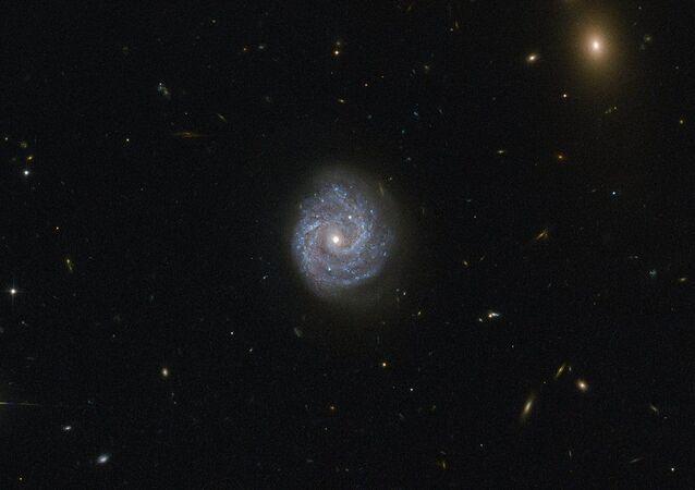 وكالة ناسا تلتقط صورة لثقب أسود بواسطة تلسكوب Hubble Space Telescope
