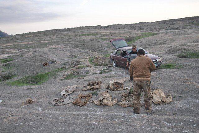 مقبرة جماعية في الموصل