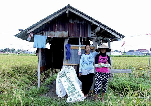 جزيرة بالي -أندونسيا