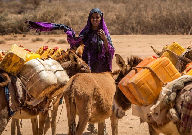 مراعي الصومال