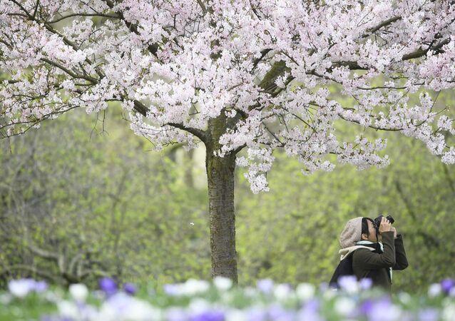 الربيع في لندن، 14 مارس/ آذار 2017