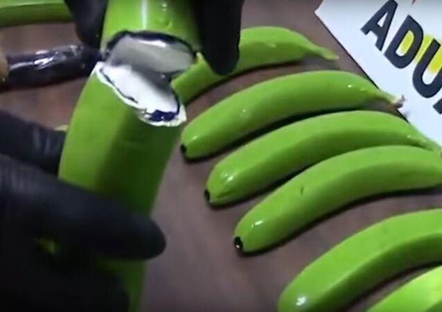 .الشرطة الاسبانية تعثر على 17 كغ من الكوكايين مخبأة في الموز