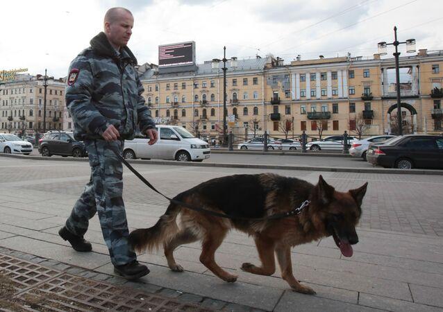 تشديد الإجراءات الأمنية في سان بطرسبورغ