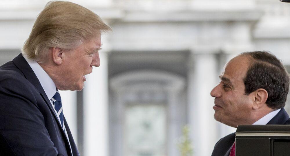 رئيس مصر عبدالفتاح السيسي خلال اللقاء مع رئيس الولايات المتحدة دونالد ترامب، 3 أبريل/ نيسان 2017